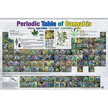 Periodic Table of Cannabis (Weed Marijuana Table) 36x24 Art Print Poster Educational Novelty Drug Smoking Humor