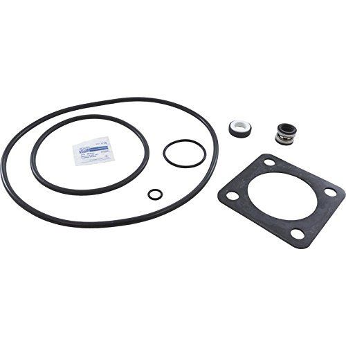 US Seal PSK-ST1 Pump Rebuild Kit with Viton Seal