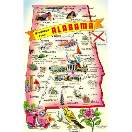 Cool Mazes (Laminated Poster Alabama Picture State Map Fun Cool Poster Print 24 x)