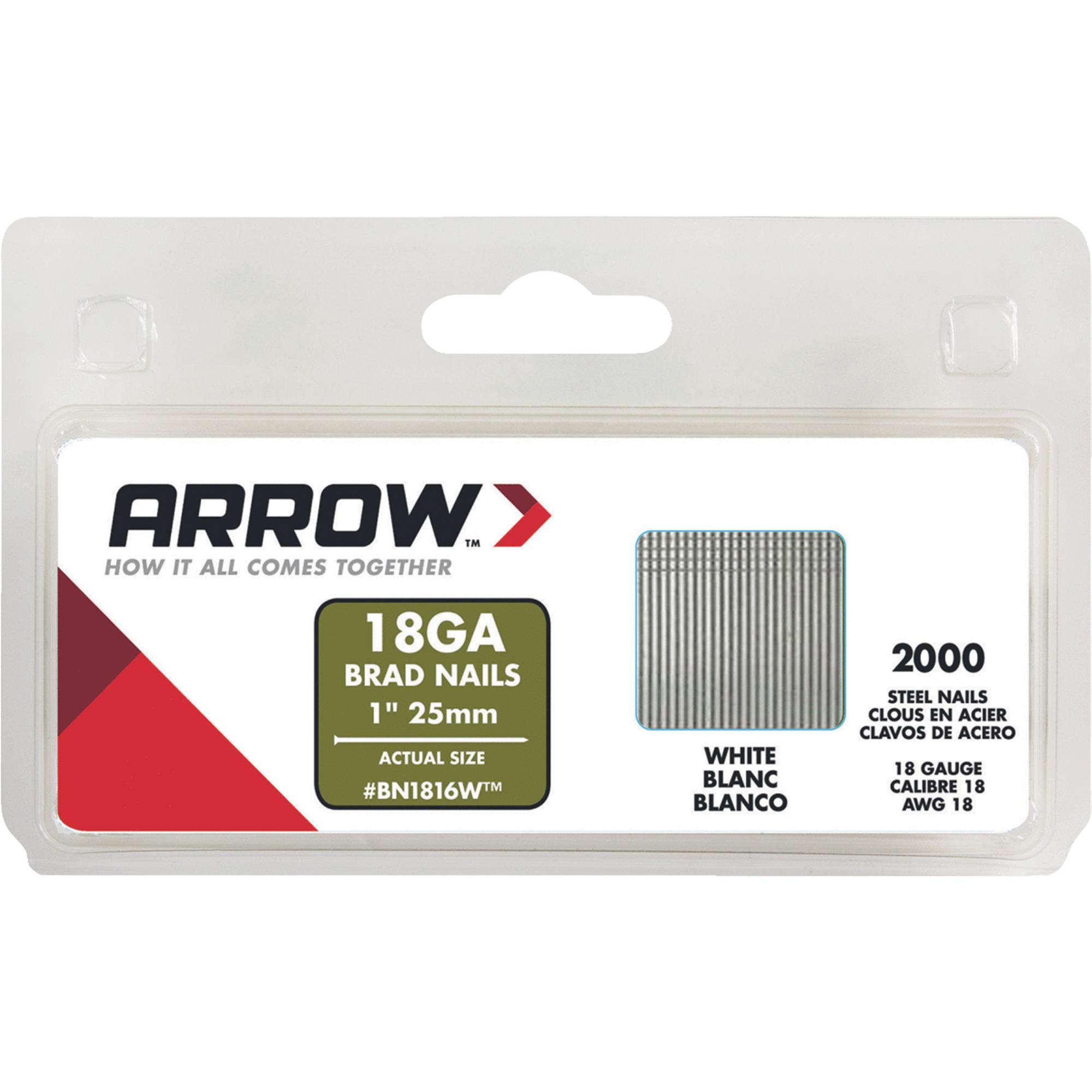 Arrow BN1816WCS 1-Inch White Nail Brad, 2000 Count