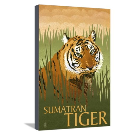Tigers Lithograph (Sumatran Tiger - Lithograph Series Stretched Canvas Print Wall Art By Lantern Press )