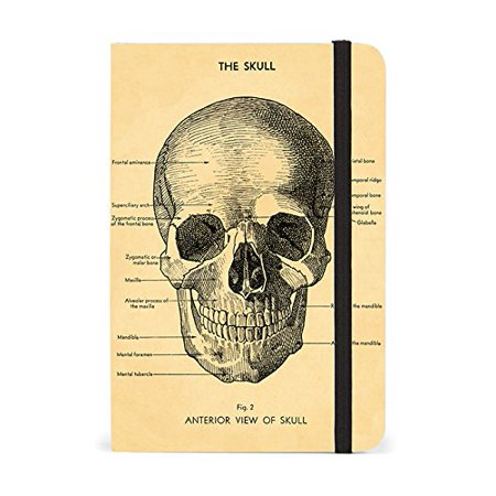 Cavallini Papers & Co Notebook Skulll 256 Pages Featuring Classic Cream Lined Paper Stock, 4 x 6