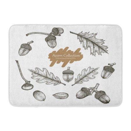 GODPOK Engraved Black Antique Acorn Collection Hand Drawing Vintage Style White Botany Engraving Rug Doormat Bath Mat 23.6x15.7 - Vintage Style Black And White Halloween Drawings