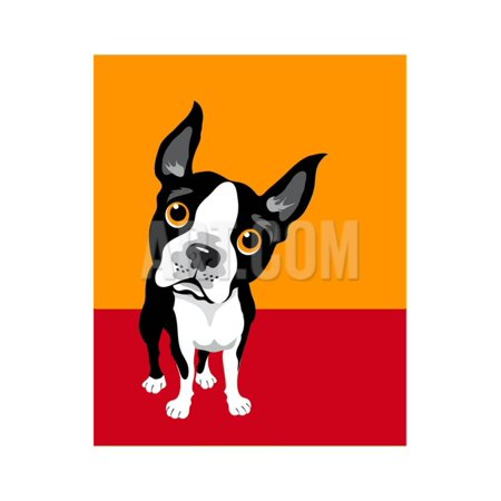 Illustration of a Boston Terrier Dog Print Wall Art By TeddyandMia