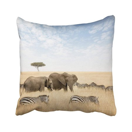 WOPOP Adult And Young Elephant With Zebras And Lone Acacia Tree In The Red Oat Grass Pillowcase Pillow Cushion Cover 16x16 inches