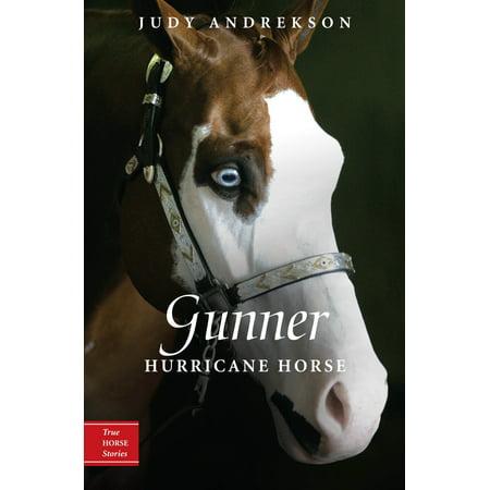 Gunner : Hurricane Horse