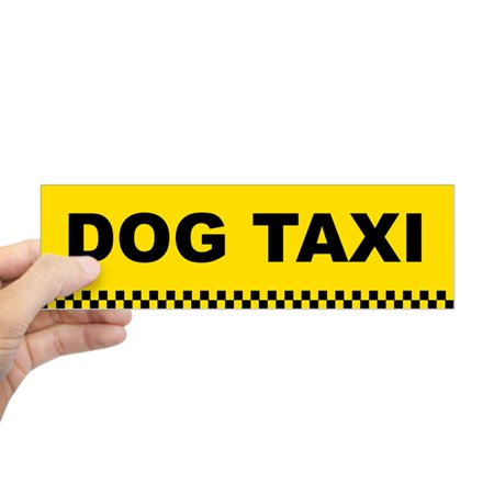CafePress - Dog Taxi Bumper Sticker - 10
