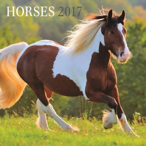 "DaySpring 12"" x 12"" Wall Calendar Horses, P1"