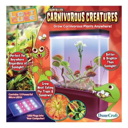 Dunecraft LED Light Cube Terrariums Carnivorous Creatures ()