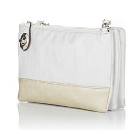 TravelSmith Womens RFID-Blocking Convertible Crossbody Bag ~ Silver/Gold