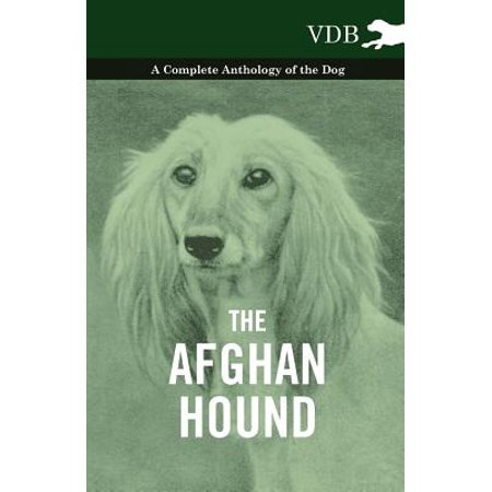 The Afghan Hound - A Complete Anthology of the Dog - - - Afghan Hound Dogs