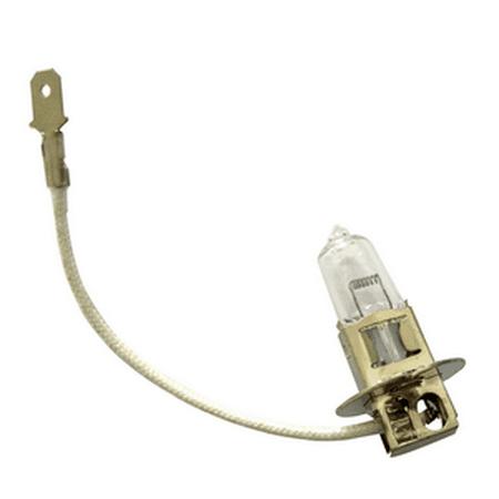 Automotive Lamp 01031 12V 35W H3 PK22S Base