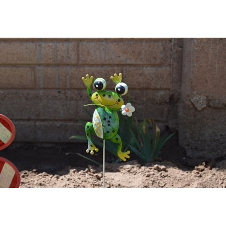 LAMINATED POSTER Outside Toy Decoration Frog Creature Garden Poster Print 24 x 36