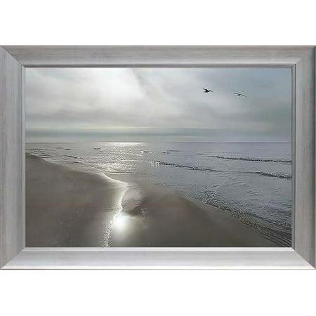 North American Art N2032 28 x 40 x 2 in. Beach Flight Framed Art