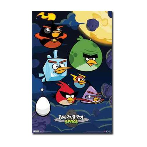 Angry Birds Space: Birds (Poster)