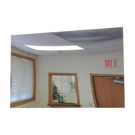 Frameless Flat Mirror 36 X 72 In H Gl