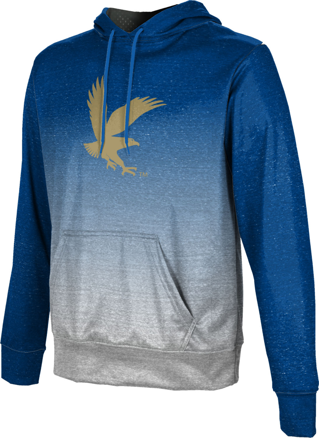 ProSphere Embry-Riddle Aeronautical University Worldwide Boys Pullover Hoodie Ombre
