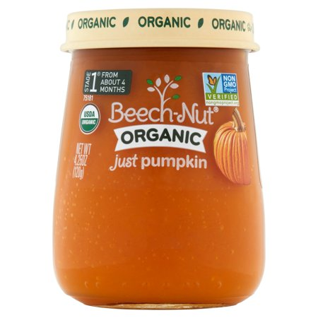 Beech Nut Organic  Stage 1 Just Pumpkin Baby Food  4 25 Oz   Pack Of 10