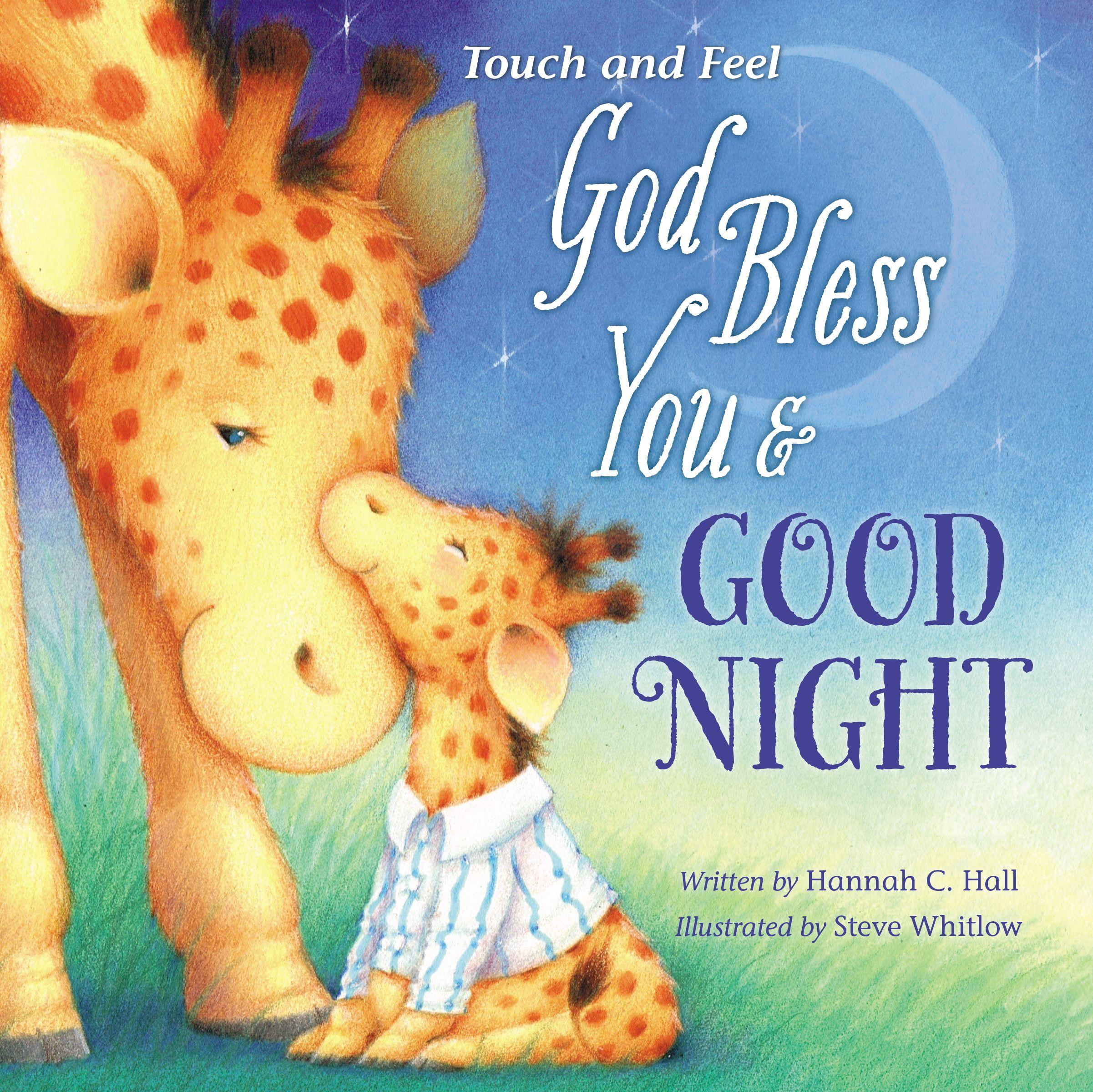 God Bless You and Good Night Touch and Feel (Board Book)