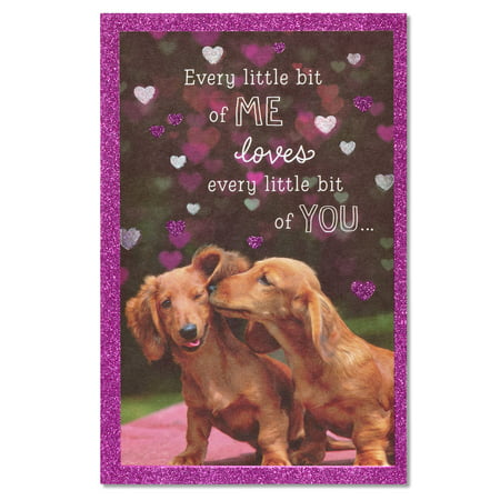 American Greetings Dachshunds Birthday Card with Glitter](Dachshund Halloween Cards)