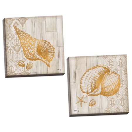 Gango Home Decor Coastal Distressed Beach Decor | Gold & Brown Saint Tropez Shell Nautical by Paul Brent (Ready to Hang); Two 12x12in Hand-Stretched Canvases - Saint Paul College Card