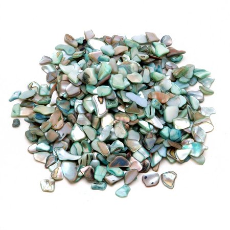Naural Vase Fillers: Small Crused Shells, Bright Aqua Green (Aqua Shell)