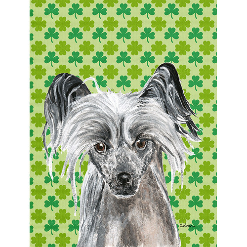 Chinese Crested St Patrick