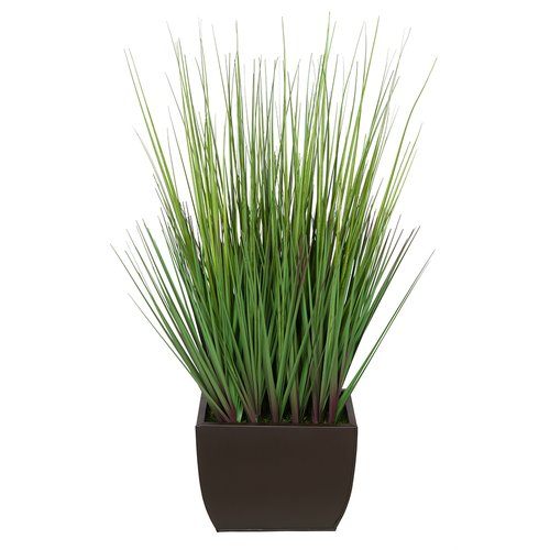 House of Silk Flowers Inc. Artificial 28'' Foliage Grass in Decorative Vase