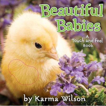 Beautiful Babies : A Touch-and-Feel Book