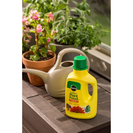 Miracle-Gro Liquid All Purpose Plant Food, 32oz - Best