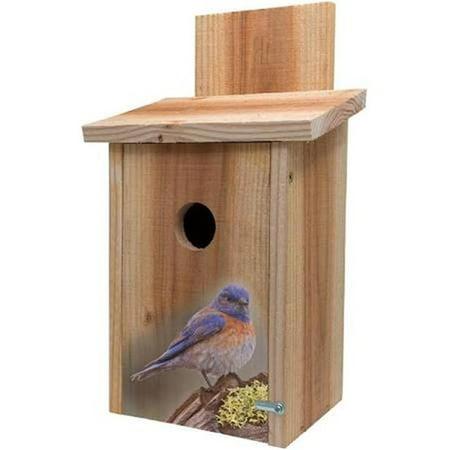 s&k bbhc-7 decorative blue bird on stump design on cedar blue bird house
