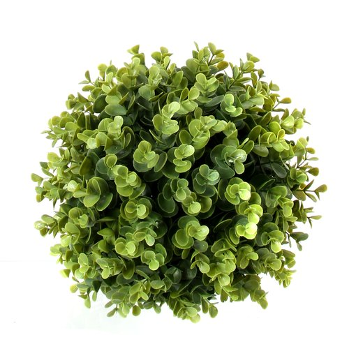 Charlton Home Ball Eucalyptus Boxwood Topiary