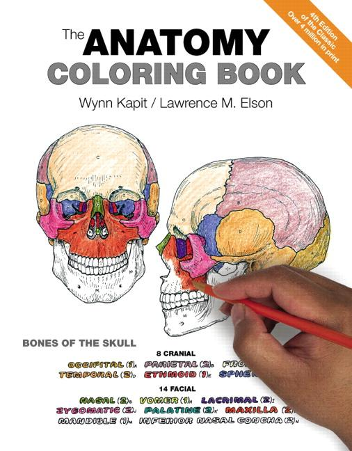 - The Anatomy Coloring Book (Paperback) - Walmart.com - Walmart.com