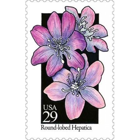 Round Lobed Hepatica Poster Print By  Us Postal Service