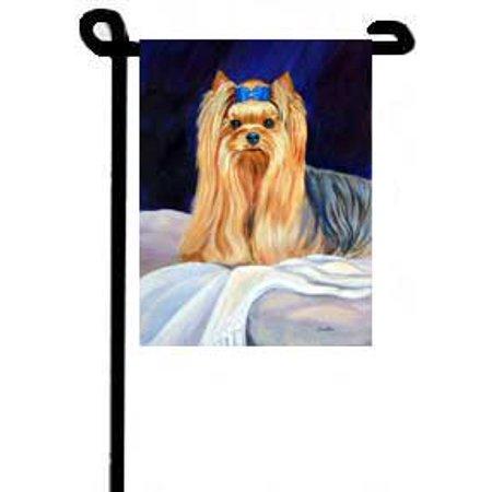 Yorkshire Terrier (Bed Bug) - 11