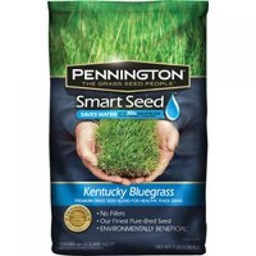 Pennington 100086847 Smart Seed Kentucky Bluegrass Premium Grass Seed Mixture, 3-Pound (Discontinued by Manufacturer)