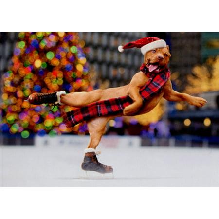 Avanti Press Dog Ice Skating Box of 10 Funny Christmas Cards