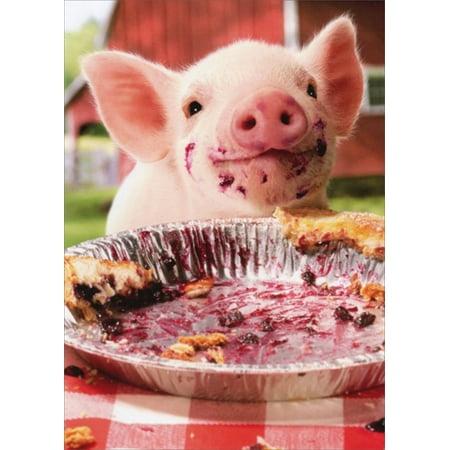 Avanti Press - Avanti Press Party Pig Pie Plate Birthday Card