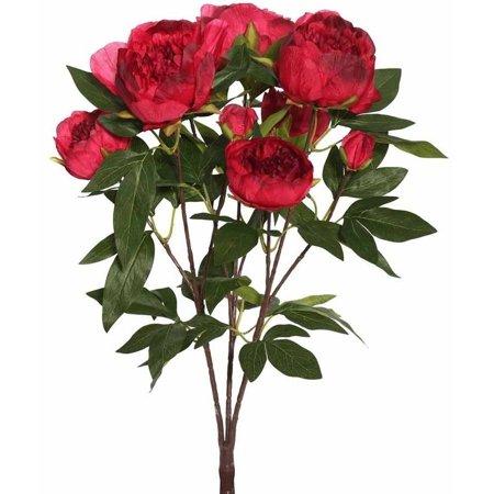 Red Bud Blossom (Vickerman 23