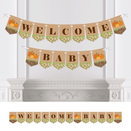 Pumpkin Patch - Fall Baby Shower Party Bunting Banner - Pumpkin Party Decorations - Welcome Baby