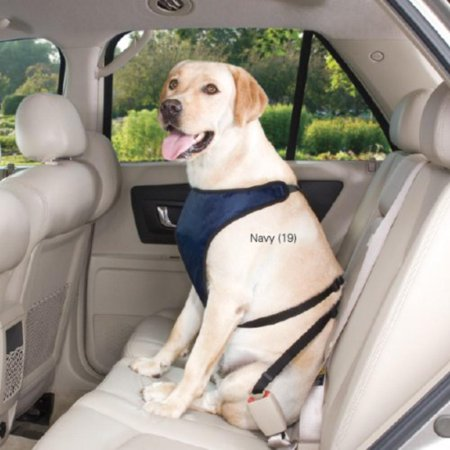 Polyester Ride Right Dog Car Harness, X-Large, Navy, This ride right dog car harness is a secure andWalmartfortable solution to dog car travel By Guardian Gear