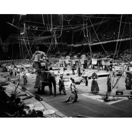 USA Massachusetts Boston Gardens Barnum and Bailey Ringling Brothers Circus Poster Print