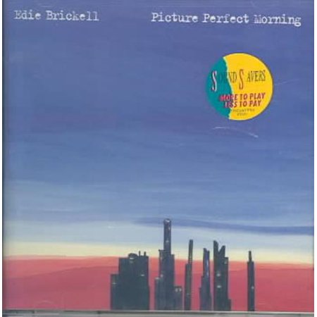 Edie Brickell Picture Perfect Morning CD | Walmart Canada