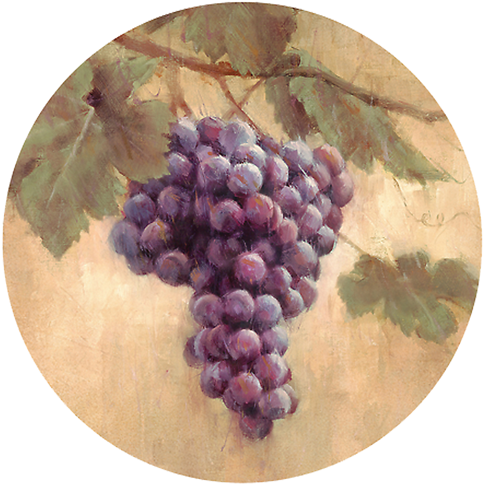 Thirstystone Drink Coasters Set, Grapes