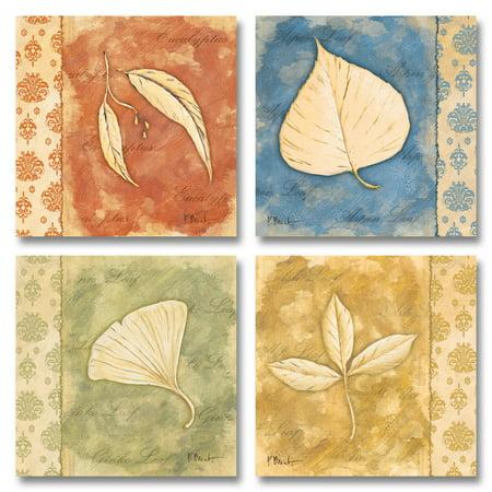 Leaf Oasis I Rustic Nature Leaf Set; Four 12X12 Poster Prints