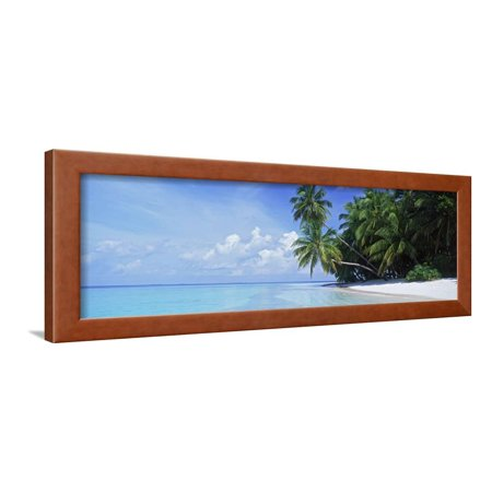 Standard Framed Panoramic Print - Palm Trees on the Beach, Fihalhohi Island, Maldives Framed Print Wall Art By Panoramic Images