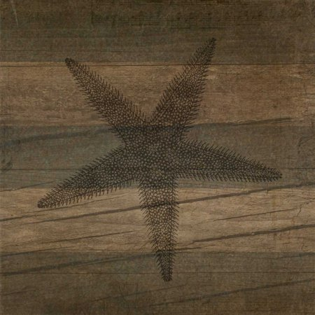 (Rustic Starfish Poster Print by Tammy Apple)