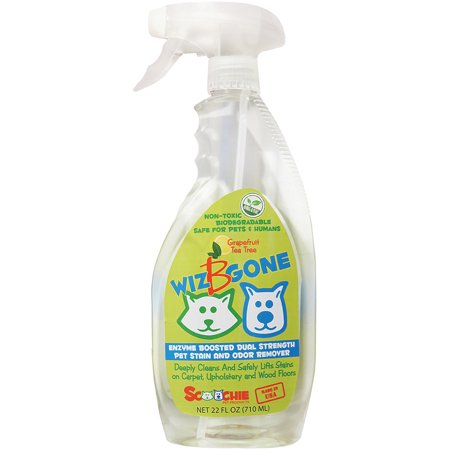 Wiz B Gone Pet Stain And Odor Remover 22oz- - image 1 of 1