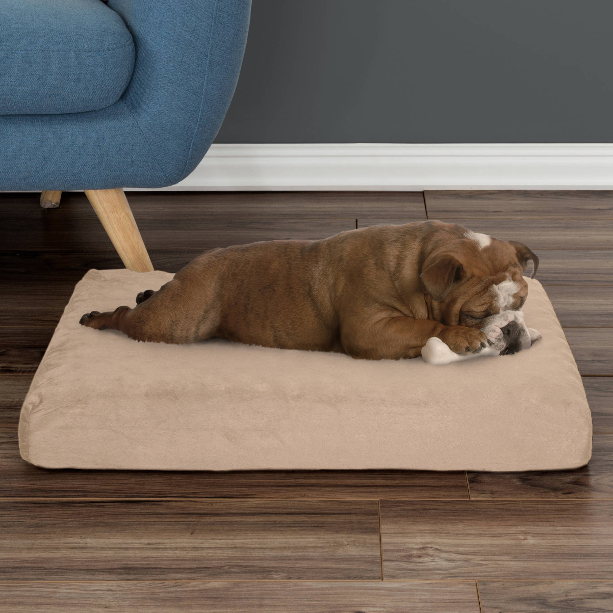 Orthopedic Memory Foam Dog Bed With Removable Cover by PETMAKER