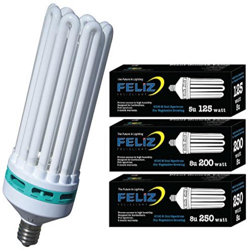 Feliz 6500K Fluorescent Lamp, 300-watt, Blue